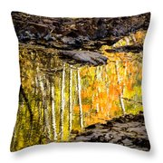 A Moment Of Reflection Throw Pillow by Mary Amerman