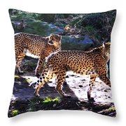 A Pair Of Cheetah's Throw Pillow by Bill Cannon