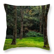 A Place To Unwind Throw Pillow by Scott Hervieux