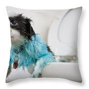 A Puppys Mistake Throw Pillow by Mike Raabe