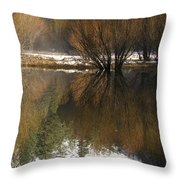 A Reflection Of Fall Trees In Mirror Throw Pillow by Rich Reid