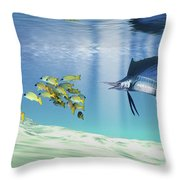 A Sailfish Hunts Prey On A Sandy Reef Throw Pillow by Corey Ford