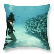 A School Of Grunts Swims By A Diver Throw Pillow by Nick Caloyianis