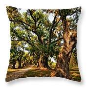 A Southern Stroll Throw Pillow by Steve Harrington