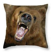 A Trained Kodiak Bear With Its Mouth Throw Pillow by Joel Sartore