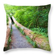 A Well Marked Path Throw Pillow by Heidi Smith