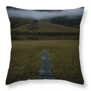 A Wooden Pathway Leads To An Throw Pillow by Randy Olson