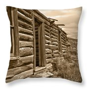 Abandoned Throw Pillow by Shane Bechler