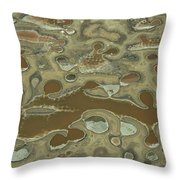 Aerial View Of Dyeing Pits Throw Pillow by Bobby Haas