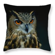 African Eagle Owls Are Among The 200 Throw Pillow by Joel Sartore