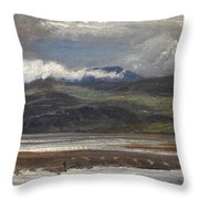 After Rain Throw Pillow by Henry Moore