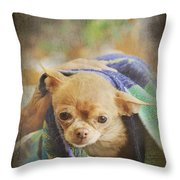 After The Bath Throw Pillow by Laurie Search