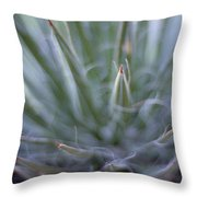Agave Throw Pillow by Marcio Faustino