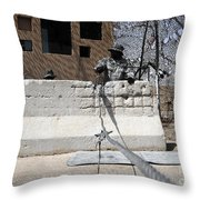 Airman Stands Post To The Entry Control Throw Pillow by Stocktrek Images