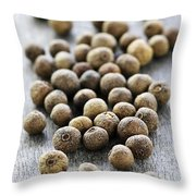 Allspice Berries Throw Pillow by Elena Elisseeva