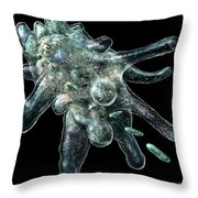 Amoeba Black Throw Pillow by Russell Kightley