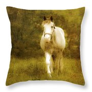 Andre On The Farm Throw Pillow by Trish Tritz