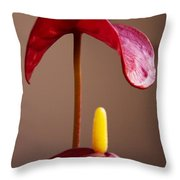 Anturium Throw Pillow by Stelios Kleanthous