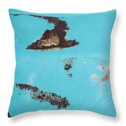 Ap13 Throw Pillow by Fran Riley