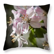 Apple Blossom Throw Pillow by Ralf Kaiser