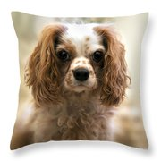Archie Portrait Throw Pillow by Jane Rix
