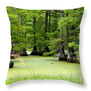 Arkansas Lake With Cypresses Throw Pillow by Carol Groenen