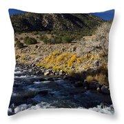 Arkansas River Autumn Throw Pillow by Ellen Heaverlo