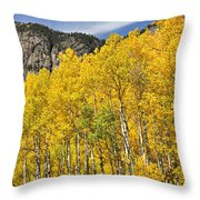 Aspen 7 Throw Pillow by Marty Koch
