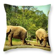 At Cross Purposes Throw Pillow by Lianne Schneider