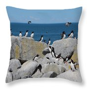 Auk Island Throw Pillow by Bruce J Robinson