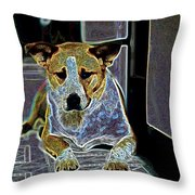 Australian Cattle Dog Boxer Mix Throw Pillow by One Rude Dawg Orcutt