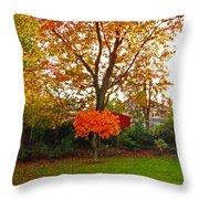 Autumn Garden Throw Pillow by Bai Qing Lyon