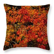 Autumn Red Throw Pillow by Garry Gay