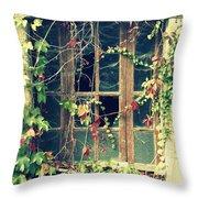 Autumn Vines Across A Window Throw Pillow by Georgia Fowler