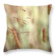 Avant Plan Throw Pillow by Aimelle