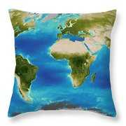 Average Plant Growth Of The Earth Throw Pillow by Stocktrek Images