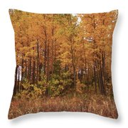 Awesome Aspens Throw Pillow by Carol Cavalaris