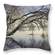 Banks Of The River Throw Pillow by Vladimiras Nikonovas