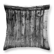 Barn Door Throw Pillow by Georgia Fowler