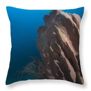 Barrel Sponge And Diver, Papua New Throw Pillow by Steve Jones