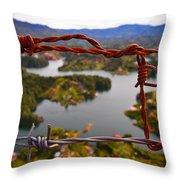 Bartok Throw Pillow by Skip Hunt