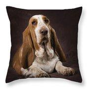 Basset Hound On A Brown Muslin Backdrop Throw Pillow by Corey Hochachka