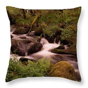 Becky Falls On Dartmoor's National Park Throw Pillow by Jay Lethbridge