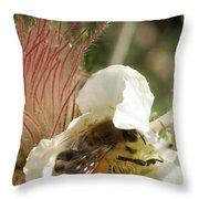 Bee Break Throw Pillow by Ernie Echols