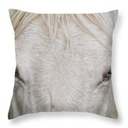 Behind Blue Eyes Throw Pillow by Heather  Rivet