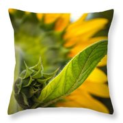 Behind My Back Throw Pillow by Gwyn Newcombe