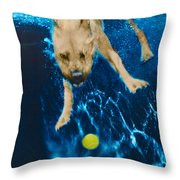 Belly Flop Throw Pillow by Jill Reger