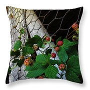 Berries Throw Pillow by Jessica Brawley