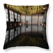 Between Heaven And Earth Throw Pillow by Pat Purdy