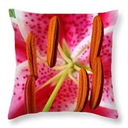 Big Lily Flower Art Prints Pink Lilies Floral Throw Pillow by Baslee Troutman